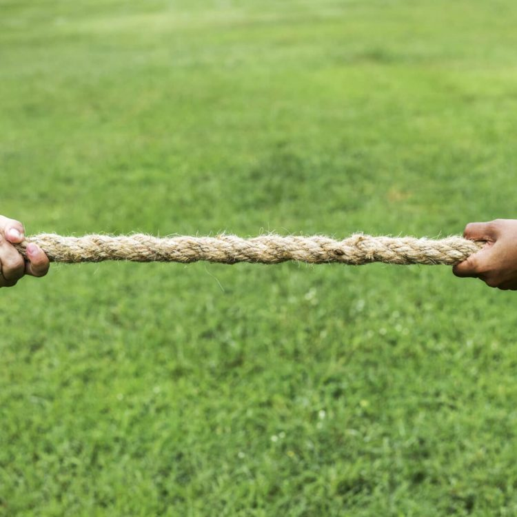 Design and Content Tug of War