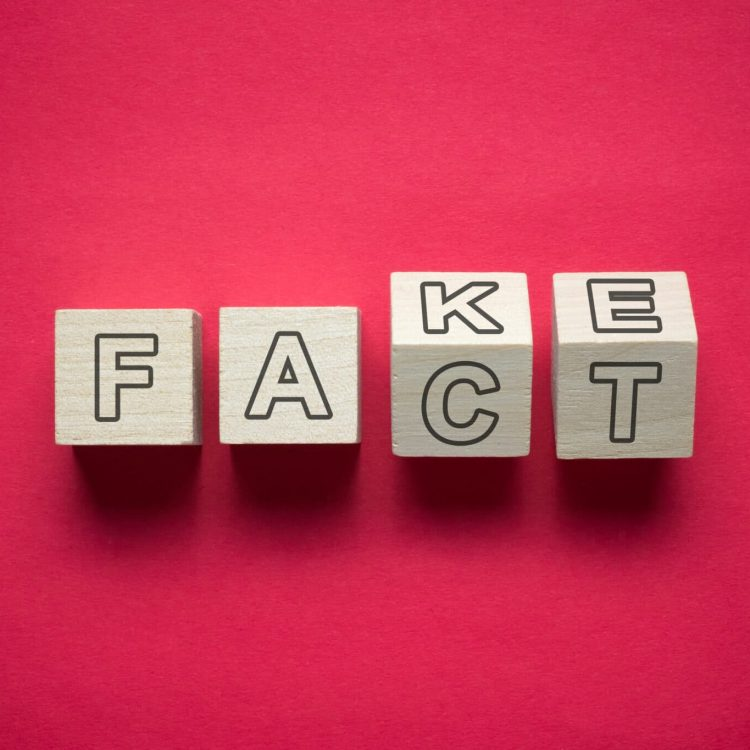 Confusion between fact and fake news using wooden cubes