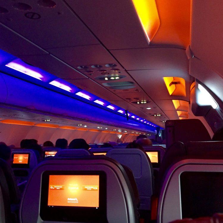 Ferrets on a plane